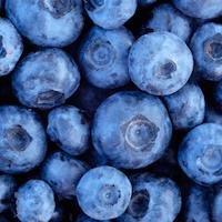 Organic Blueberry Powder